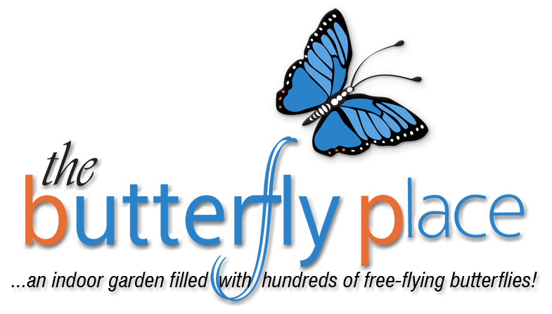 logo for The Butterfly Place