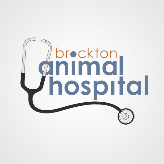 Brockton Animal Hospital